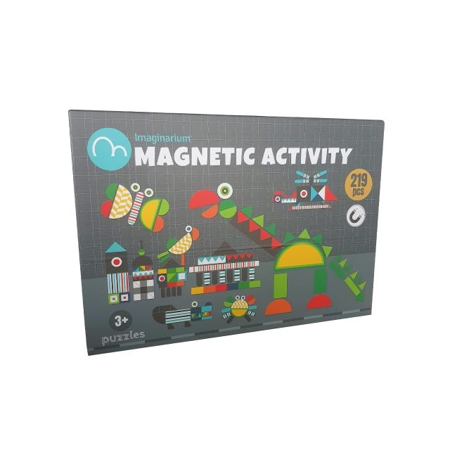 MAGNETIC ACTIVITY